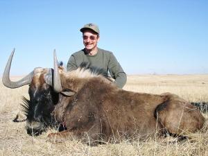 Dave Noem - Black Wildebeest