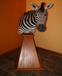 Zebra Pedestal